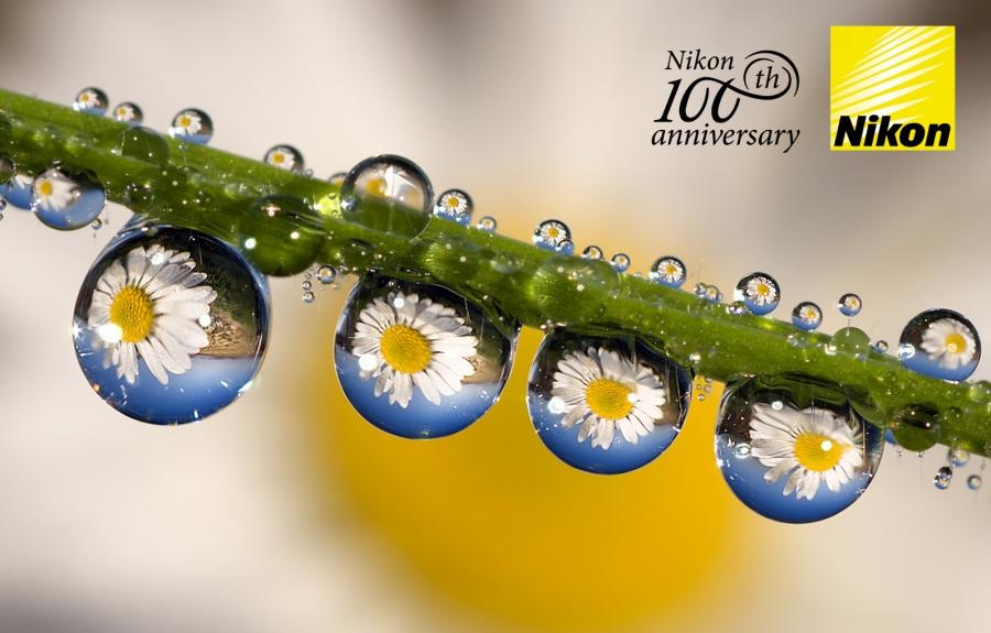 Nikon Summer Cashback!